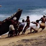 Bottom Trawling Fishing Method Bulldozing over Marine Life