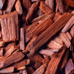 Red Alert for Red Sanders, the Rare Red Coloured Timber
