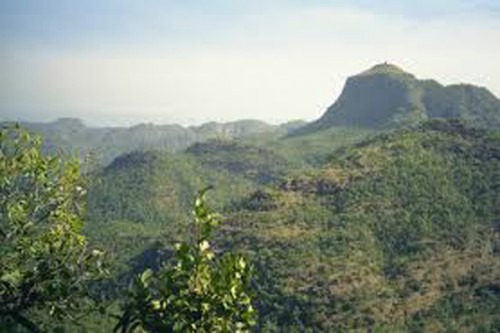 The Protected Boma Hills of Bastar