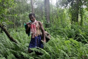 Watch: Forest Man, a short film on the Man who Made a Forest