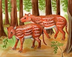 image_2293e-Cambaytherium-thewissi