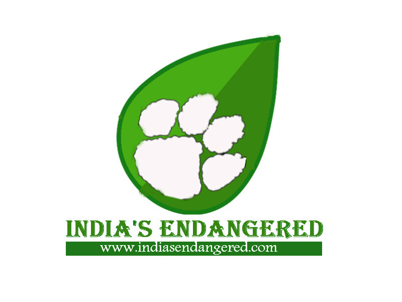 logo-with-website-green