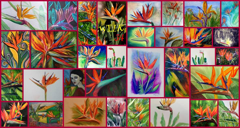 Collage of all the creations for Week 34 - Bird of Paradise