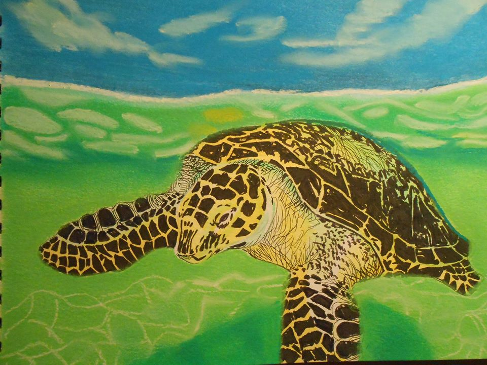 Sea turtle painted by one of the member artists for the weekly challenge.