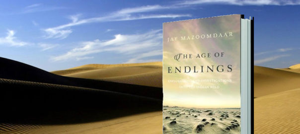 Book Age of endlings