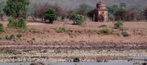 Abandoned village on the banks of the River Ken in Panna. Image via cc/flickr