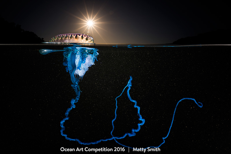 Best of Show - Matty Smith. Shot at Bushrangers Bay, NSW Australia