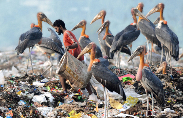 Image via The Hindu